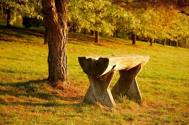 寂しい雰囲気の公園