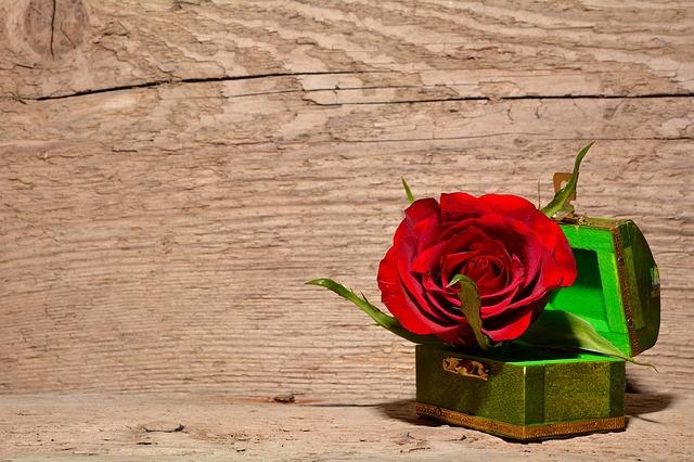 薔薇の宝箱